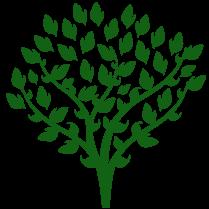 Tree final